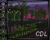 !C* My Romantic Garden