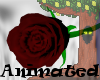 Animated Black Rose