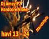 DjAmey P2 Hardcore Vibes
