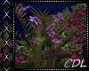 !C* L Garden Flowers II