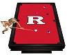 Rutgers Kights PoolTable