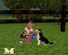 Animatie Husky Dog