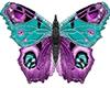 ~S~ Butterfly 3