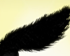 !Furry Tail - Black
