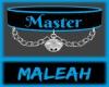 Master Collar: Blue