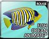 |2' Ocean Fish III