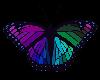 💎 Rainbow ButterFly 2