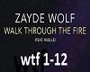 Zayde- walk trough fire