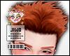 🐀 Zoro Ginger