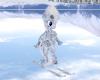 Snow Camo Skis