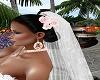 WeddingLacyVeil&PinkRose