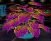 [CI]Neon Club Plant 1