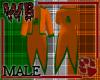 Irish Pride Coat