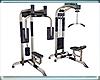 BN Fitness Equipment (2)
