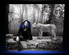 [FS] She Wolf Frame