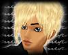 m.. Eli Blonde