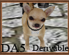 (A) Chihuahua Leash
