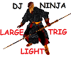 DJ Ninja Trig Light 2