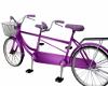 Couples Animated Bike