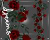 Lovers Rose Vines