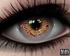 Eyes - Ember
