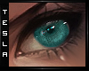 ⚜ Focus - Teal - Eyes
