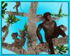 Monkey Tree Jungle