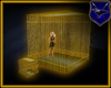 ! Gold Cage 00b