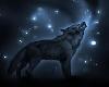 Spiritual Wolf Poster