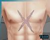 .t. Luffy chest scar 2Y~