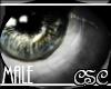 {CSC} Realistic Gray (M)