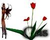 [cas]tulip seats