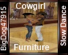 [BD] Cowgirl Furniture
