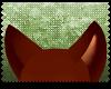 ♡|Somali ears|6