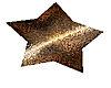 Golden star floor marker