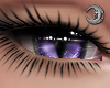 Feline Thistle Eyes F