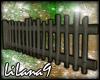 *LL* Fence enhancer
