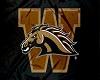 WMU Broncos Flag