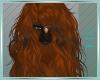 [K] Teke Hair V2