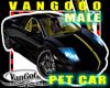 VG  BLACK yellow CAR avi