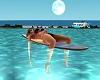 SurfBoard Chill {DD}