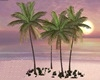 E* Wedding Coconut Trees