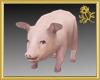 Wilbur Pig Pet
