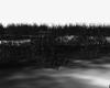 [MM] Black Grass