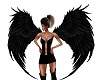 Bacl Angel Wings