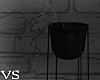 {VS}*Sad Dead Plant*