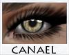 [CNL]Eye unisex sorrel 2