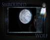 ~The Moon~