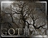 DC - Gotham dead tree