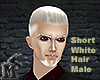 Short White Hair Male